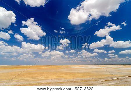 Desert Flatlands