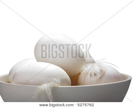 Egg Selection With B W Layer