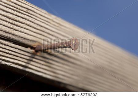 Rusty Nail Close Up
