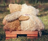 two teddy bears on a bench with arms around each other vintage toned poster