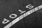 Stop label and line on the asphalt road with braking tracks across it poster