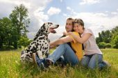 Young loving couple with a Dalmatian outdoors poster