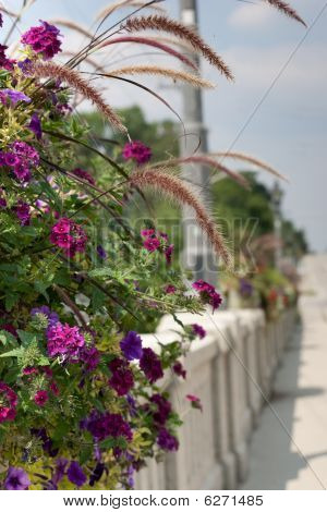 Colorful Flower Basket On Bridge