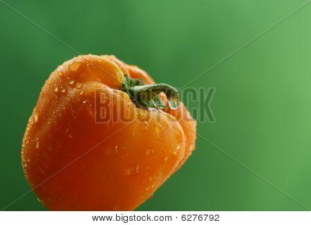 Yellow Bell Pepper