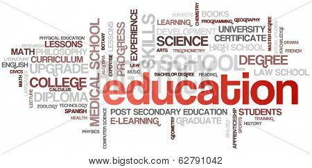 Education Word Cloud Bubble Tags Tree Detailed Vector