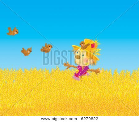 Scarecrow and sparrows in a field