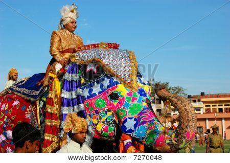 Elephant Festival 2010