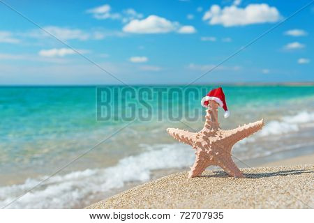 Sea-star In Santa Hat At Sea Sandy Beach. Holiday Concept For Ne