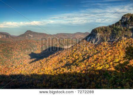 Rare Autumn Bear Shadow In Blue Ridge Mountains