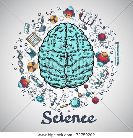 Brain sketch science concept