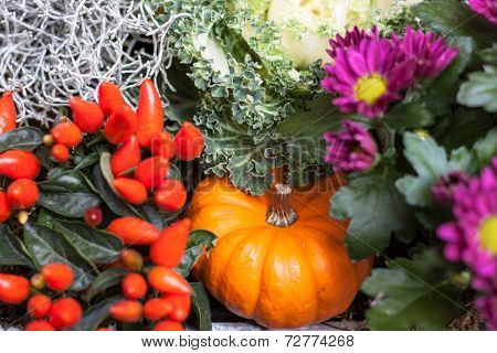 Pumpkin Of Fresh Flowers