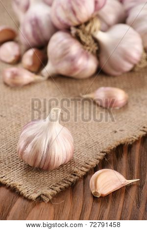 Garlic Close-up On Burlap Background