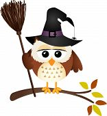 Scalable vectorial image representing a halloween owl with witch broom, isolated on white. poster