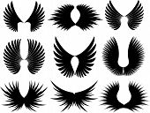 Large collection of wing silhouettes on a white background poster