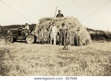 1930 Photo Of A Family Haying