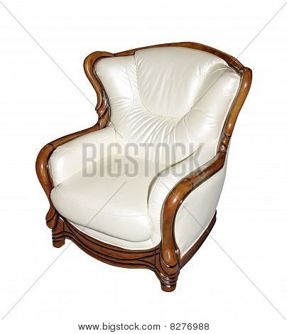Expensive leather armchair
