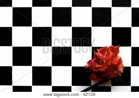 Rose And Chessboard 1