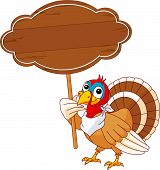 Thanksgiving Turkey holding blank sign . Isolated on a white background. poster