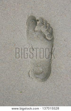 A Human Footprint in the beach sand