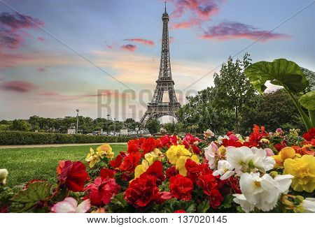 Skyline Of Paris City Roofs With Eiffel Tower