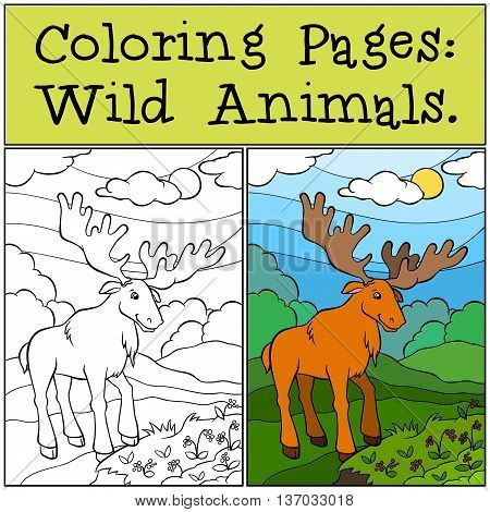 Eurasia Elk coloring page | Free Printable Coloring Pages | 470x450
