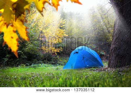 single tent in forest and sun rays