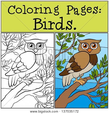 Coloring Pages: Birds. Little Cute Owl Sits On The Tree Branch.