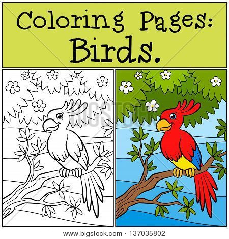Coloring Pages: Birds. Little Cute Parrot Sits On The Tree Branch And Smiles.