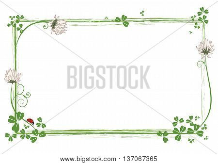 vector frame with flowers of clover and ladybird
