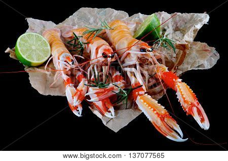 Three Delicious Raw Langoustines with LimeHalves and Rosemary on Parchment Paper closeup on Black Wooden background