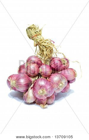 Onions raw materials used to add aroma to foods. poster