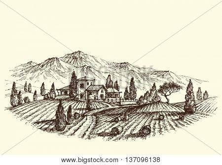 Agriculture landscape. Land after harvest, farm and hay bales