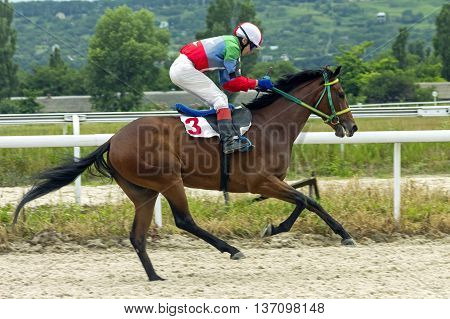 Horse race for the prize Anilina in Pyatigorsk,Caucasus,Russia.