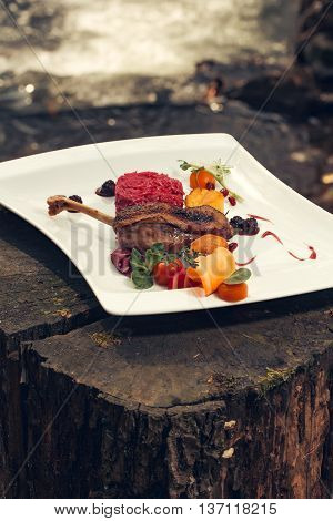 Confit duck or goose leg crisp delicious served with garnish colorful vegetables and blackberry sauce on natural background
