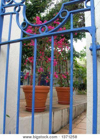 2005 Cruise Blue Gate
