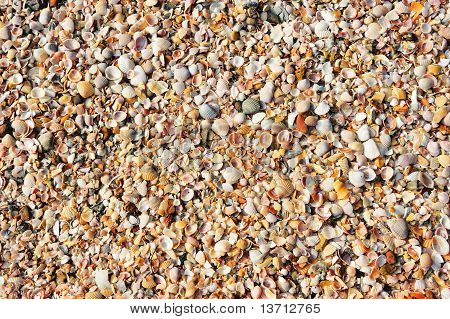 Gravel Texture At The Beach As Background