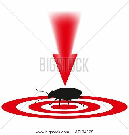 cockroach a dangerous insect, an animal with paws, blow to the wrecker, an insect on a sight, a red arrow, destruction of a being, insects with a thin body, long legs