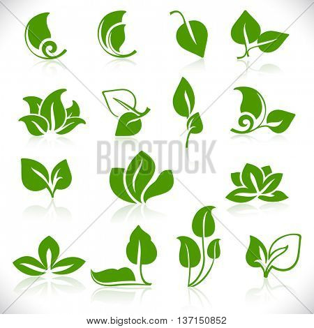 Simple green leaves shapes isolated on white background. Leaf icon vector set.