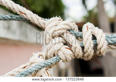 background rope to bind stop line lasso