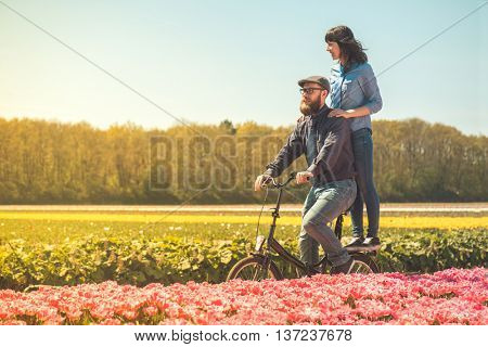 Happy loving couple cycling through a typical Dutch tulips field in spring