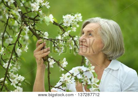 Pensive elderly woman walking in the spring nature with cherry flowers