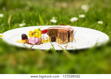 Chocolate souffle cake and ice cream fruit sherbet decorated with berries sweet sauce flower mint on natural background