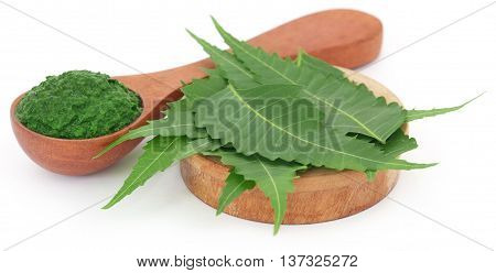 Medicinal neem leaves with ground paste over white background