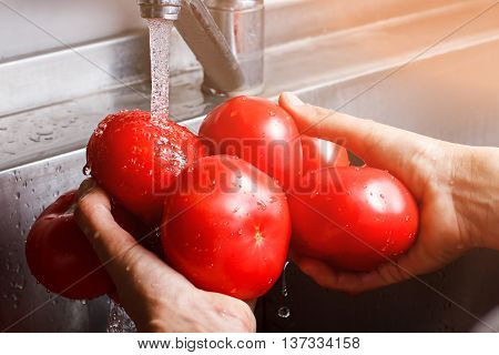Man's hands wash tomatoes. Water flowing on huge tomatoes. Big homegrown vegetables. So much juice inside.