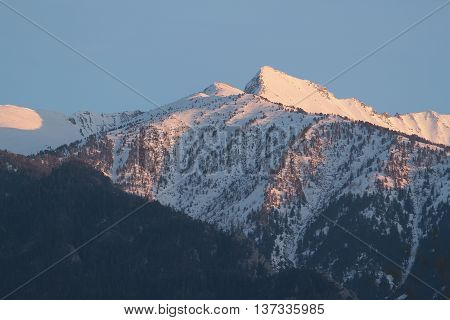 Mountains with snow and forest in spring