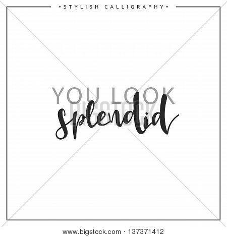 Calligraphy isolated on white background inscription phrase, you look splendid.