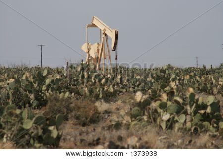 Cactus Oilwell 4