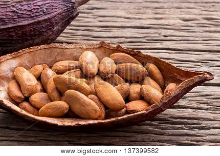 Collection of cacao seeds from pot is ready to be made cacao powder setup on wooden background.