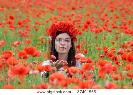 A woman in the field with a circlet of poppies picking flowers