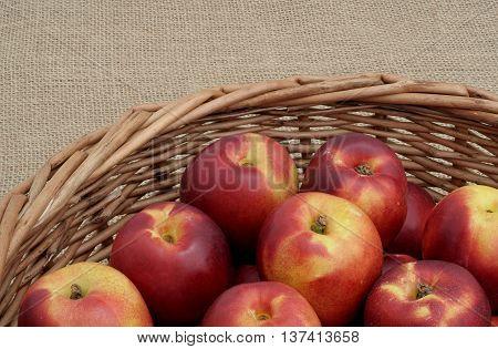 few nectarines in a wicker basket on canvas
